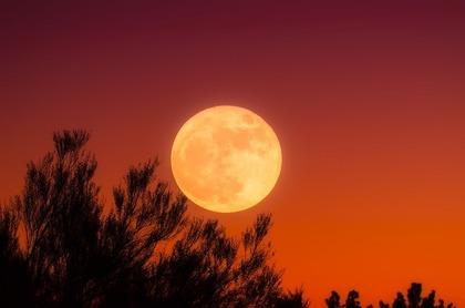 十五夜の満月