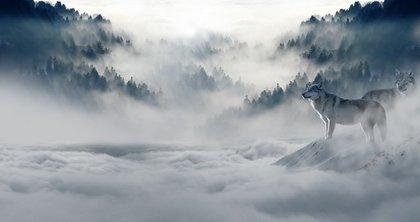雪かすむ風景