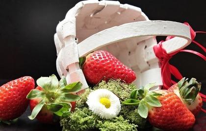 イチゴの実と花