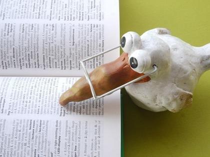 辞書で内容を確かめる小鳥