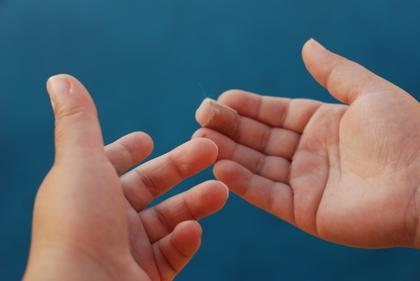 両手の手のひら