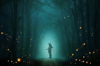 蛍が飛び交う森