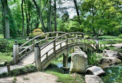 自然豊かな庭園