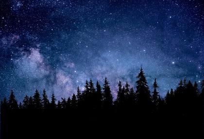 美しい星が並ぶ空