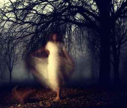 「霧のとばり」