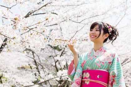 桜と着物姿の女性