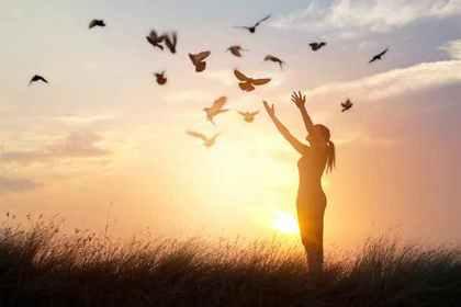 たくさんの鳥に手を差し伸べる女性
