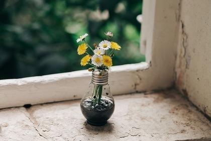 窓際の花瓶と花