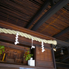 Small thumb shutterstock 1240647835