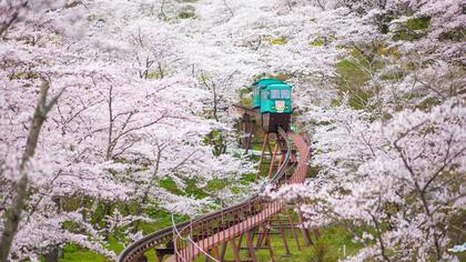 春の美しい景色