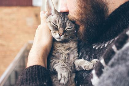猫と過ごす男性