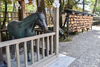 馬小屋にいる馬